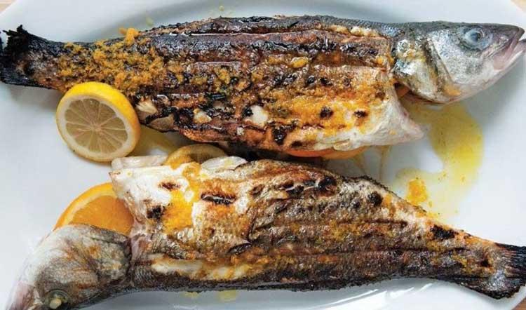 ماهی شکمپر