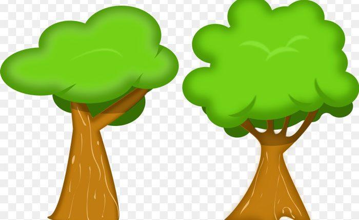 دو درخت همسایه