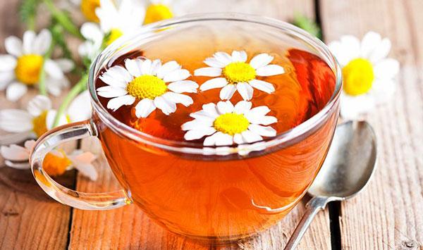 درمان دیابت با نوشیدن چای بابونه