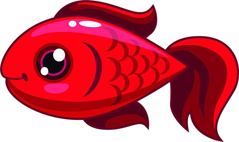 شعر ماهی سرخ تپلی