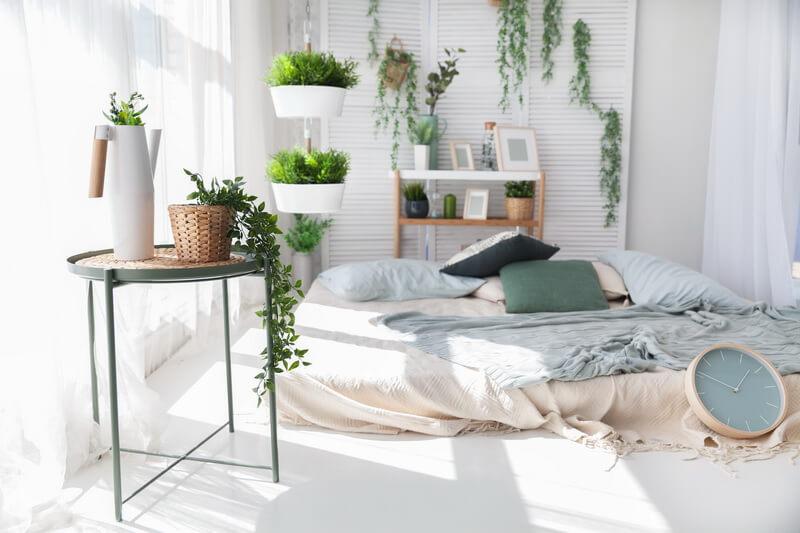 دیزاین گیاهان مخصوص آپارتمان