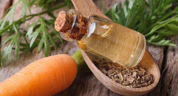 روغن دانه هویج