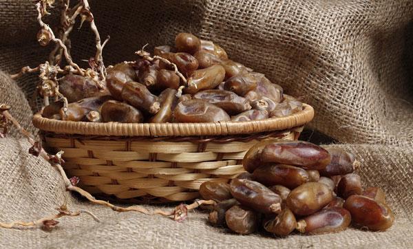 نظر حکمای طب سنتی درباره خرما