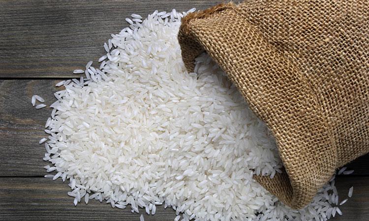 محصولات بیولوژیک برنج